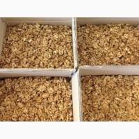 Продаем орехи оптом в Краснодаре. орехи оптом Краснодарский край