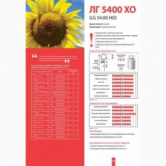 Купить подсолнечник ЛГ 5400 ХО по низкой цене
