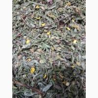 Курильский чай (лист, цвет) (оптом от 5кг)