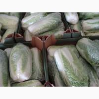 Реализую продажу пекинской капусты