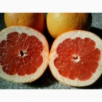 Грейпфрут из Марокко