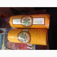 Продам: сыр Золотое Кольцо 319 р/кг