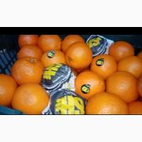Иранские Апельсины