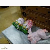 Продам мясо птицы