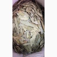 Эвкалипт (лист) (оптом от 5кг)