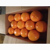 Продам: сыр Царский 420 р/кг