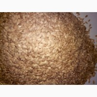Продаем лен коричневый и белый (золотой), ГОСТ либо очистки 99.9% по желанию заказчика
