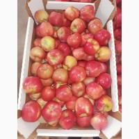 Яблоки оптом от производителя в большом ассортименте