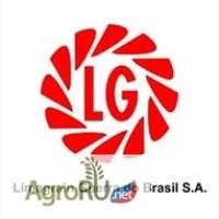 Семена гибридов подсолнечника Мегасан, Тунка, Голдсан, ЛГ 5550, ЛГ 5485 от Limagrain