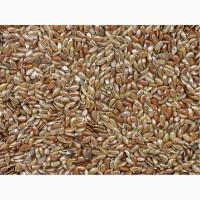 Семена льна масличного ВНИИМК 620