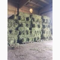 Продам сено от производителя урожай 2018 года