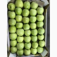 Яблоки. Продажа крупным оптом