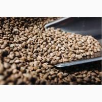 Семена конопли отборные пищевые