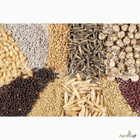 Комбикорма, кормосмеси, мука, шрот, геркулес, отруби, семена подсолнечника, кукурузы