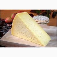 Сыр Тильзитский