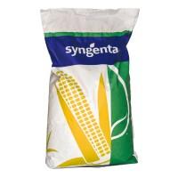 Syngenta семена гибрида кукурузы