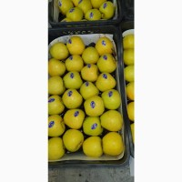 Яблоки Голден производство Турция