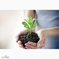 Гербициды, Средства защиты растений