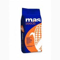 MAS Seeds семена гибрида кукурузы