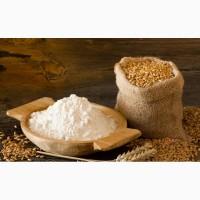 Мука пшеничная 1 сорт оптом
