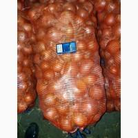 Продаём овощи от 20 тонн