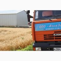 Зерновозы. Перевозка зена