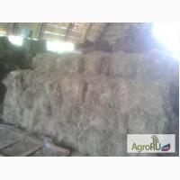 Продажа сена.Сено из люцерны, тимофеевки, сено в рулонах, сено в кипах и корма для лошадей