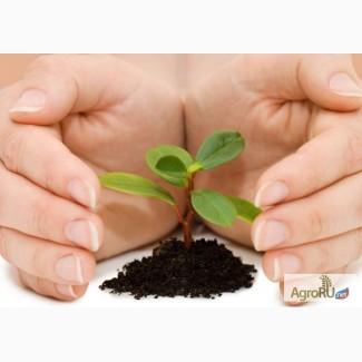 Агрохимия, средства защиты растений