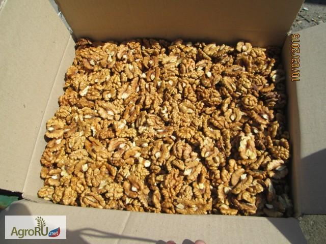 Фото грецкого ореха в домашних условиях