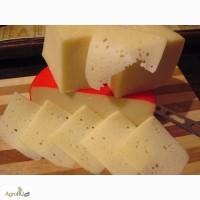 Сыр ГОСТ для производства