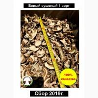 ПРОДАЮ ОПТОМ Белые сушеные грибы