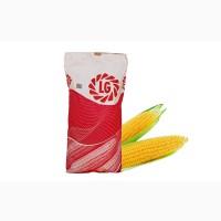 Лимагрейн семена гибрида кукурузы